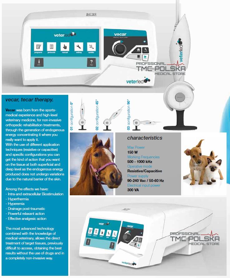 fizjoterapia dla zwierząt